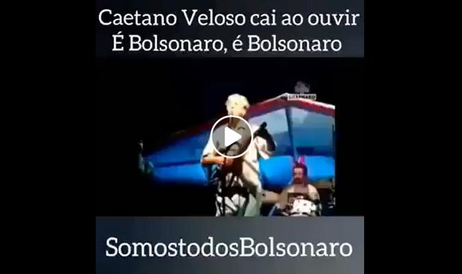 [Agência Lupa] #Verificamos: É falso que Caetano Veloso caiu do palco após fã de Bolsonaro gritar o nome do presidente