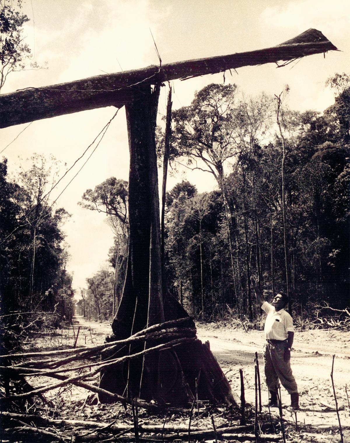 Sayão buscou o Norte eterno quando percebeu o fi m da utopia na cidade onde fincou a primeira estaca de madeira, em 1956: Brasília