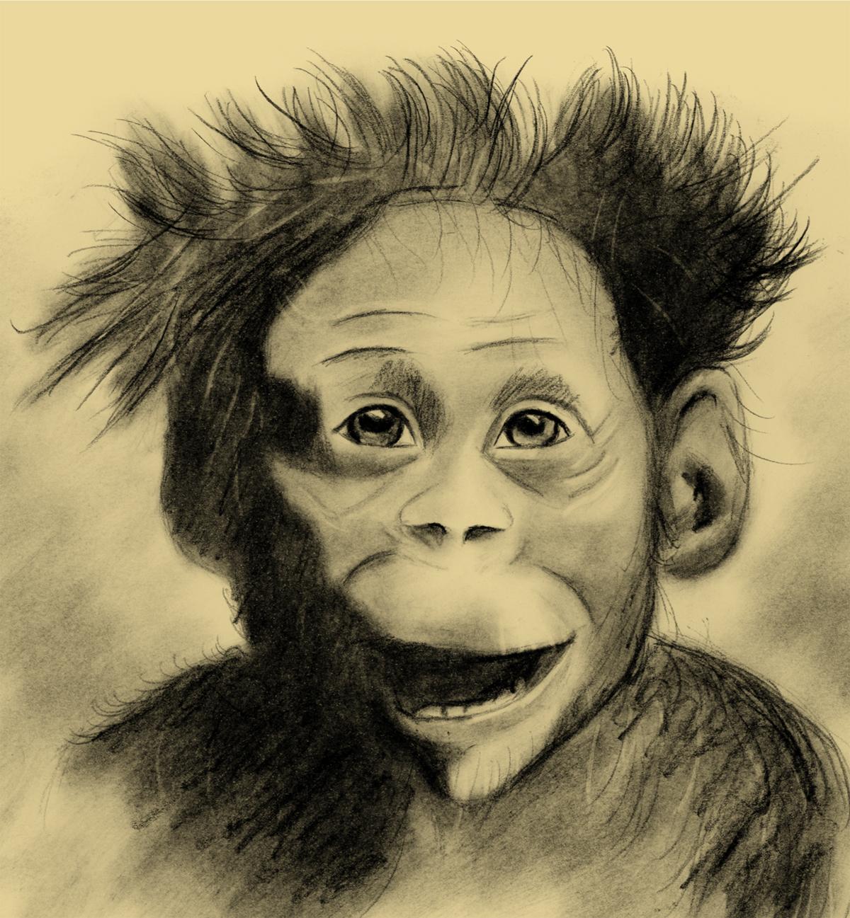 Salem nasceu na Etiópia e morreu aos três anos de idade e ainda tinha dentes de leite