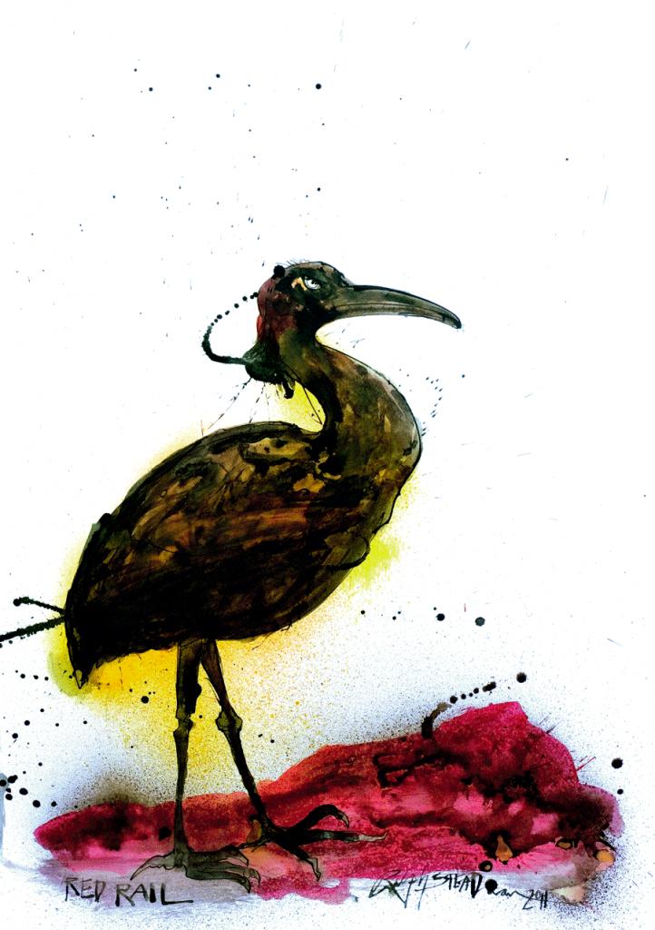 Primo da saracura, o ralídeo-vermelho viveu nas Ilhas Maurício até o final do século XVII. Incapaz de voar, foi alvo fácil para predadores introduzidos em seu hábitat