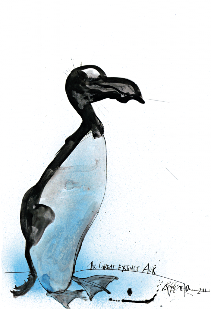 O arau-gigante era uma ave marinha do Atlântico Norte, de aparência similar à do pinguim, embora não fossem aparentados. O último casal da espécie foi morto em 1844 na Islândia