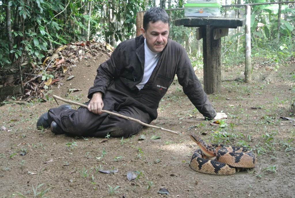 Rodrigo Souza contempla uma surucucu de seu plantel no Núcleo Serra Grande (foto: Bernardo Esteves)