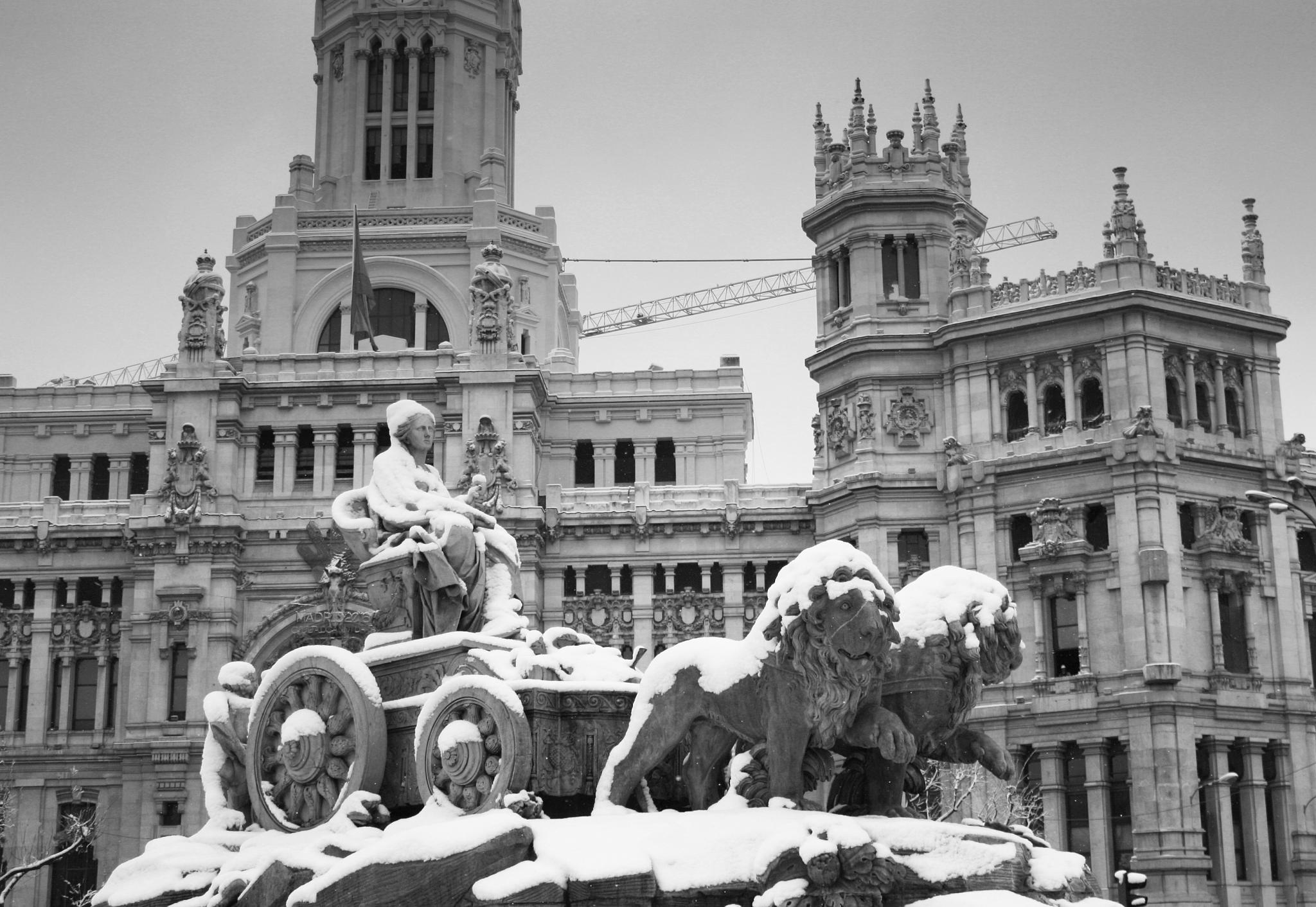<i>Plaza de Cibeles</i>