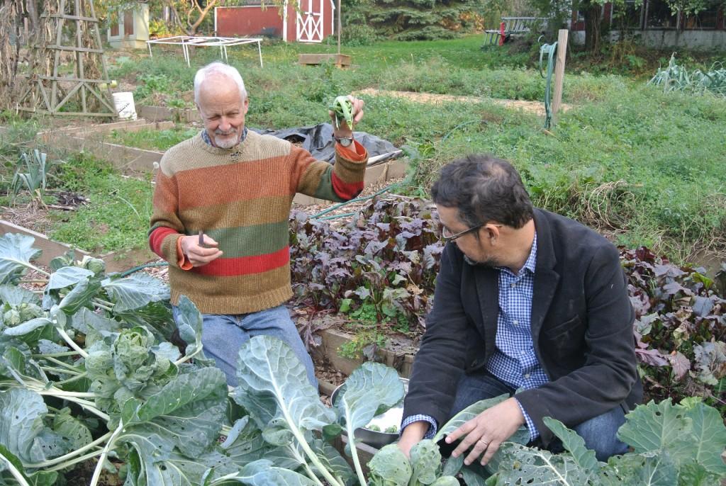 Chris Uhl e sua mulher plantam quase tudo o que comem numa grande horta de 400 metros quadrados que têm no fundo de casa; cultivam tomates, pimentões, cebolas, abóboras, brócolis, beterrabas, cenouras e ervilhas, entre outros