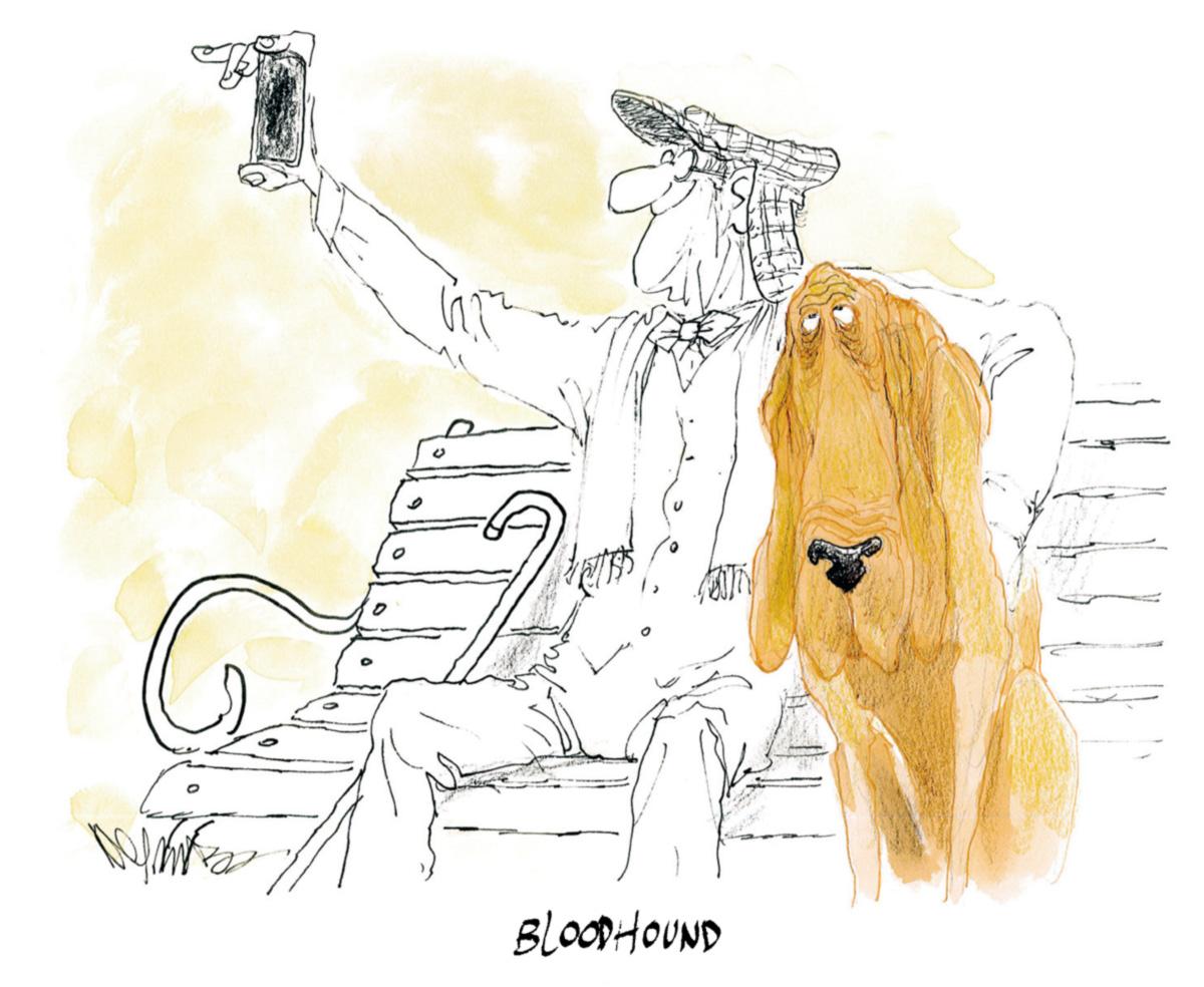 Cartuns de Roberto Negreiros