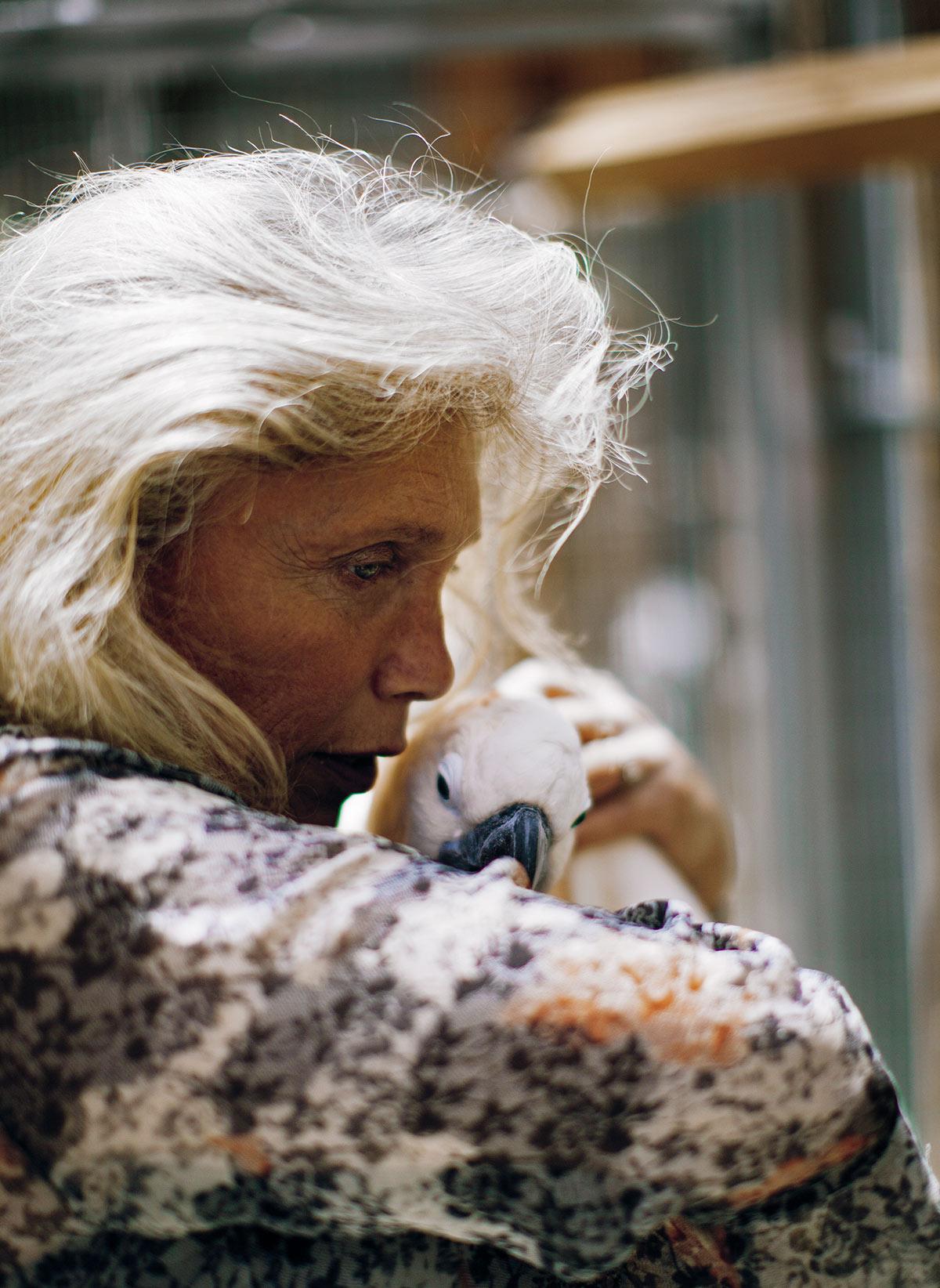 """Lilly Love e a cacatua Caju: """"Aqui todas as aves são vítimas. Todas passaram por coisas que de certa forma também aconteceram com os veteranos. Isso me ajuda a lidar com meu trauma."""""""