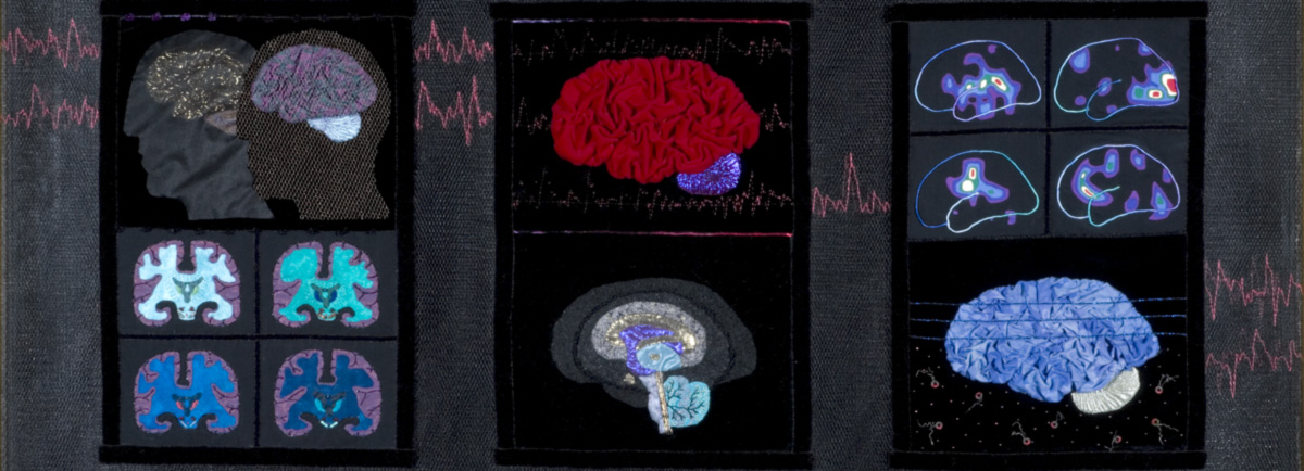 Bordados com linhas e materiais diversos, de Marjorie Taylor, do Museu da Representação Cientificamente Precisa do Cérebro em Tecido. As figuras demonstram atividades cerebrais estudadas pela equipe de neuroeconomia da Universidade de Oregon e ilustram em aplicações de feltro ou brocado colorido o que acontece no cérebro, por exemplo, quando uma pessoa ganha na loteria
