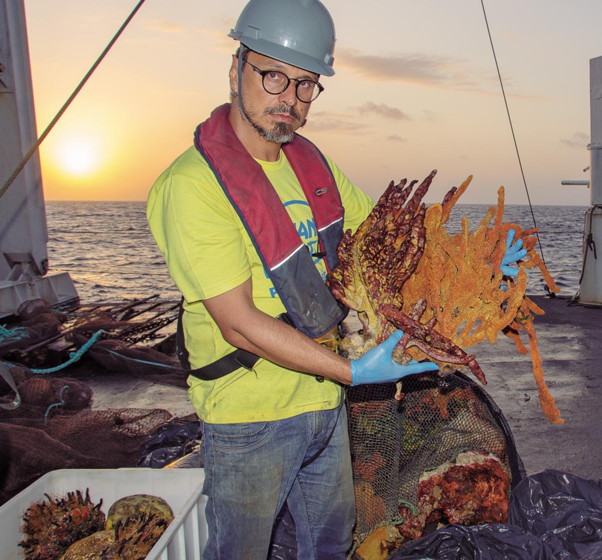Esponjas, algas e peixes coletados no fundo do mar pela equipe de Rodrigo Moura são indícios de que há um enorme recife na foz do Amazonas. Segundo os manuais, ele não devia estar ali