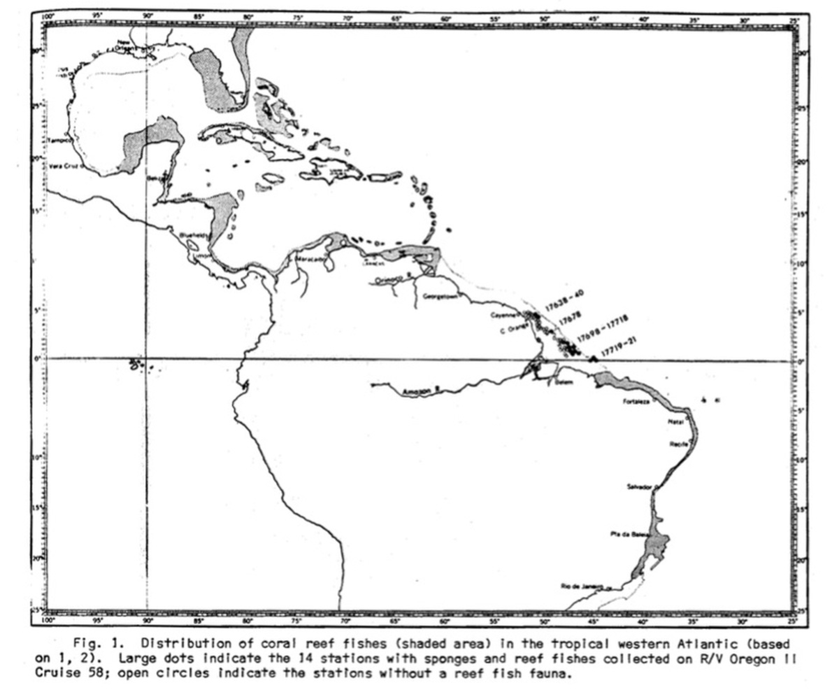 O mapa feito a mão num artigo de 1977 mostra as regiões em que pesquisadores encontraram um ``fundo de esponjas`` na foz do Amazonas