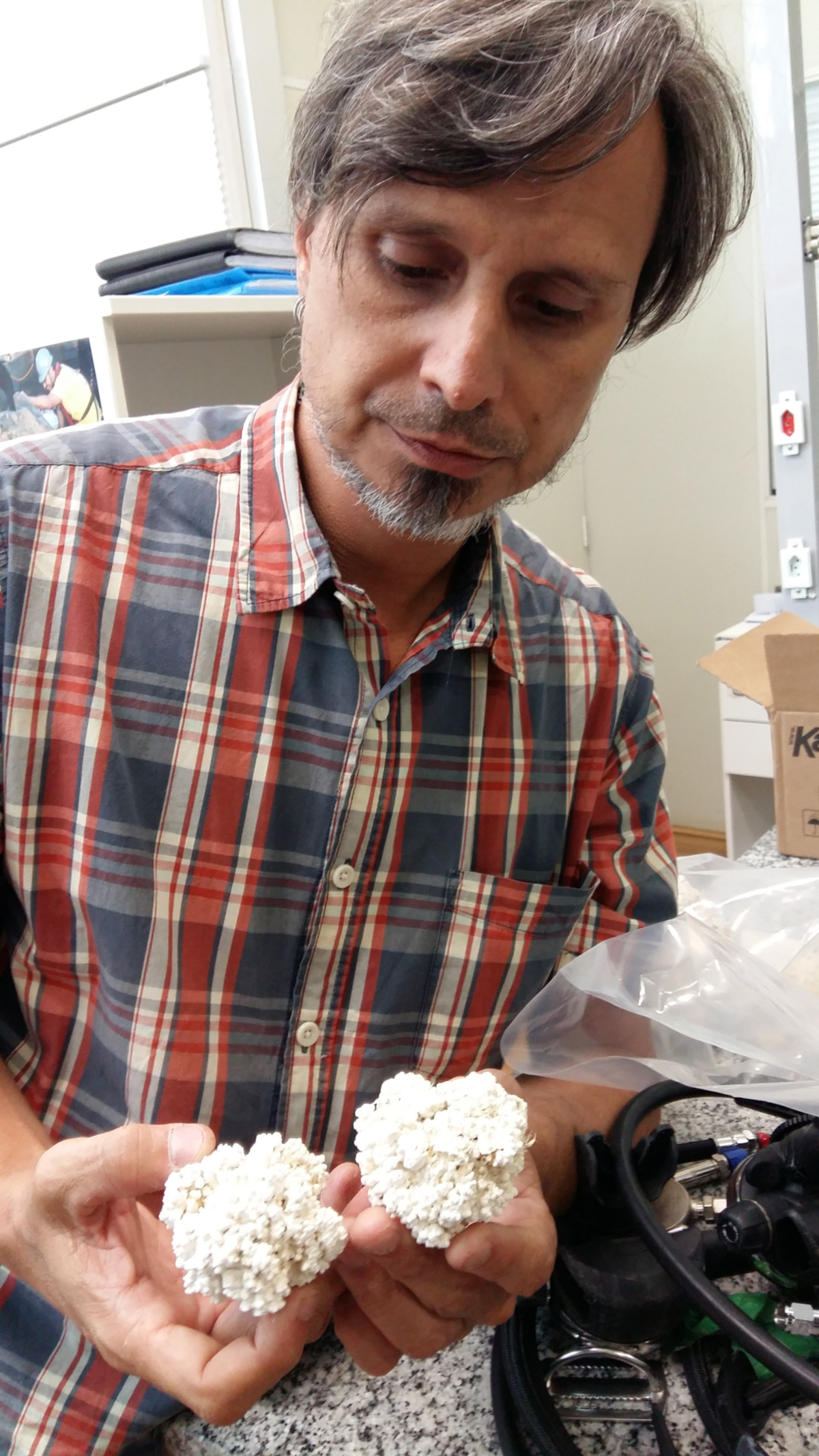 Rodrigo Moura mostra rodolitos que ele guarda em seu laboratório