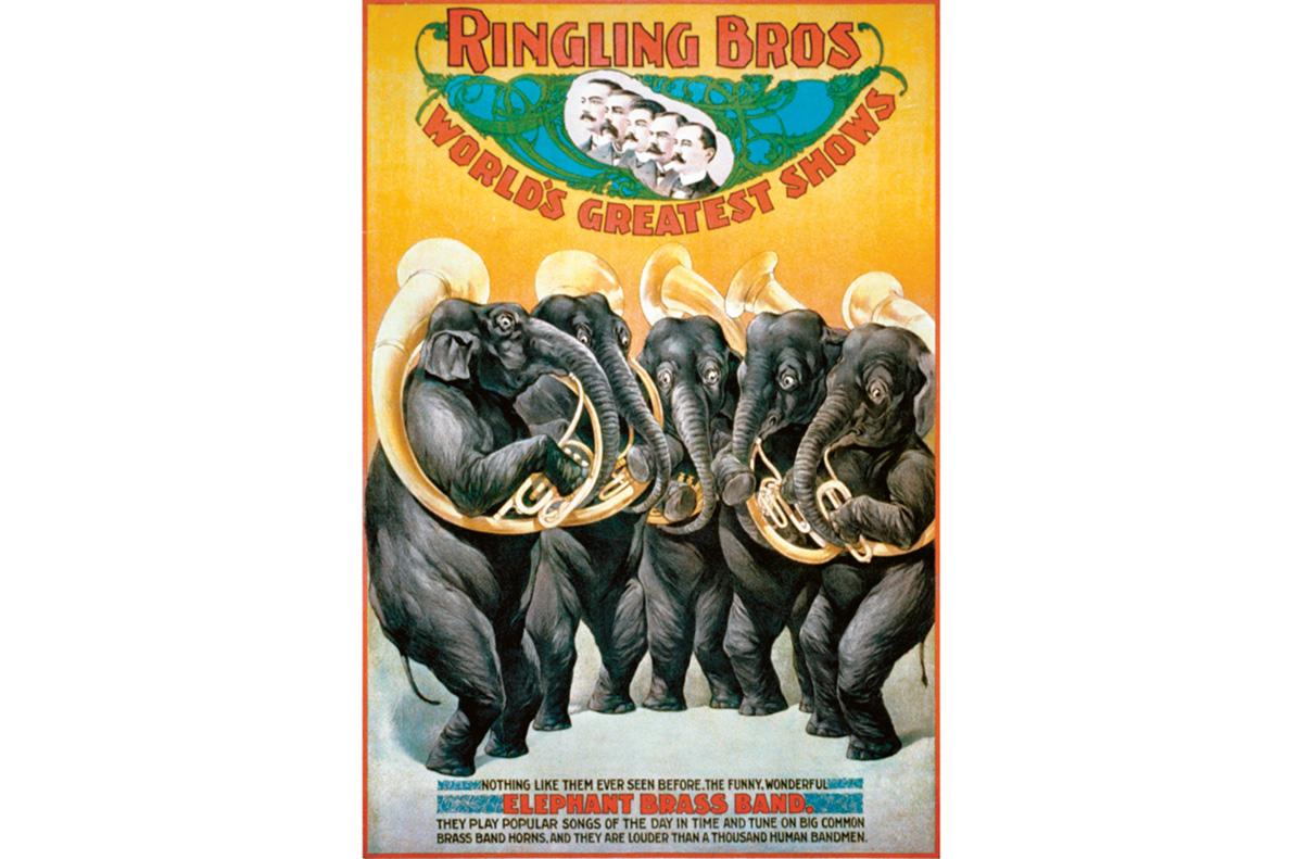 Há anos os elefantes são objeto de disputa entre o Ringling Bros. e os defensores de animais