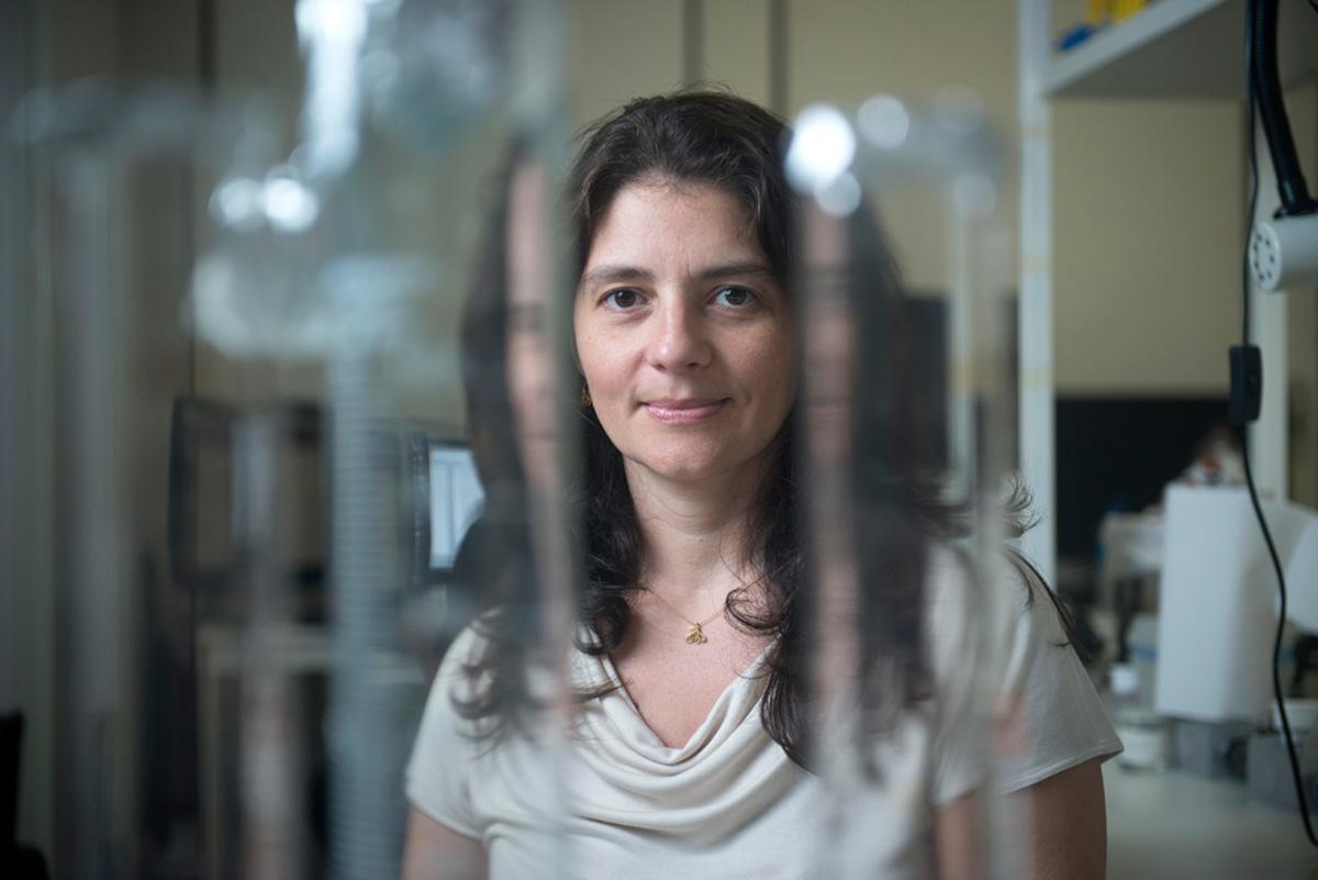 Herculano-Houzel, em foto de 2013. A decisão de se mudar para Universidade Vanderbilt levou seu trabalho a divulgação rara para cientistas brasileiros. O New York Times publicou, em 14 de dezembro, um longo e elogioso perfil da pesquisadora
