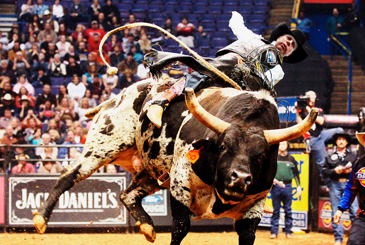 Doria conseguiu ficar mais tempo acima do touro que na prefeitura