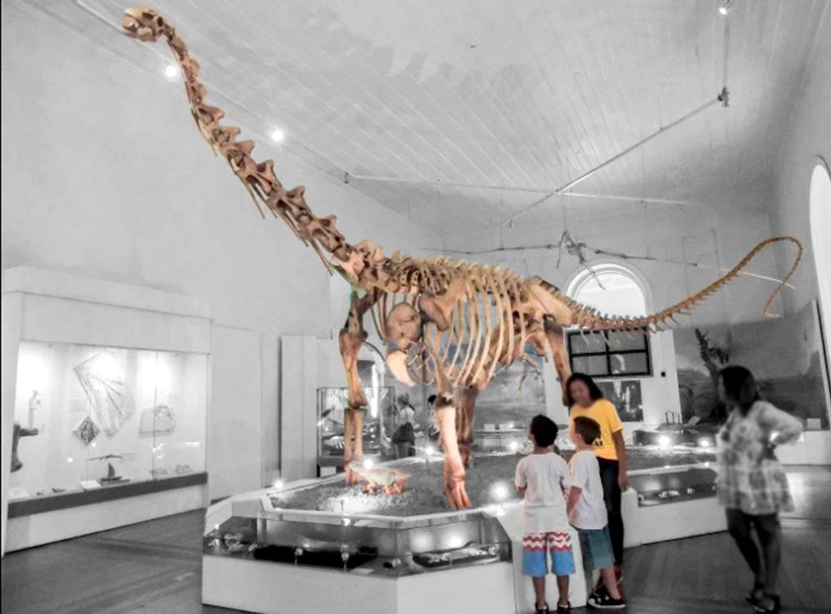 """""""Essa minha amiga ficava na sala dos dinossauros. Posicionava-se ao lado do fóssil do Dinoprata e orgulhosamente entoava o nome científico do animal. Nunca esqueci: <i>Maxakalisaurus topai</i>"""""""