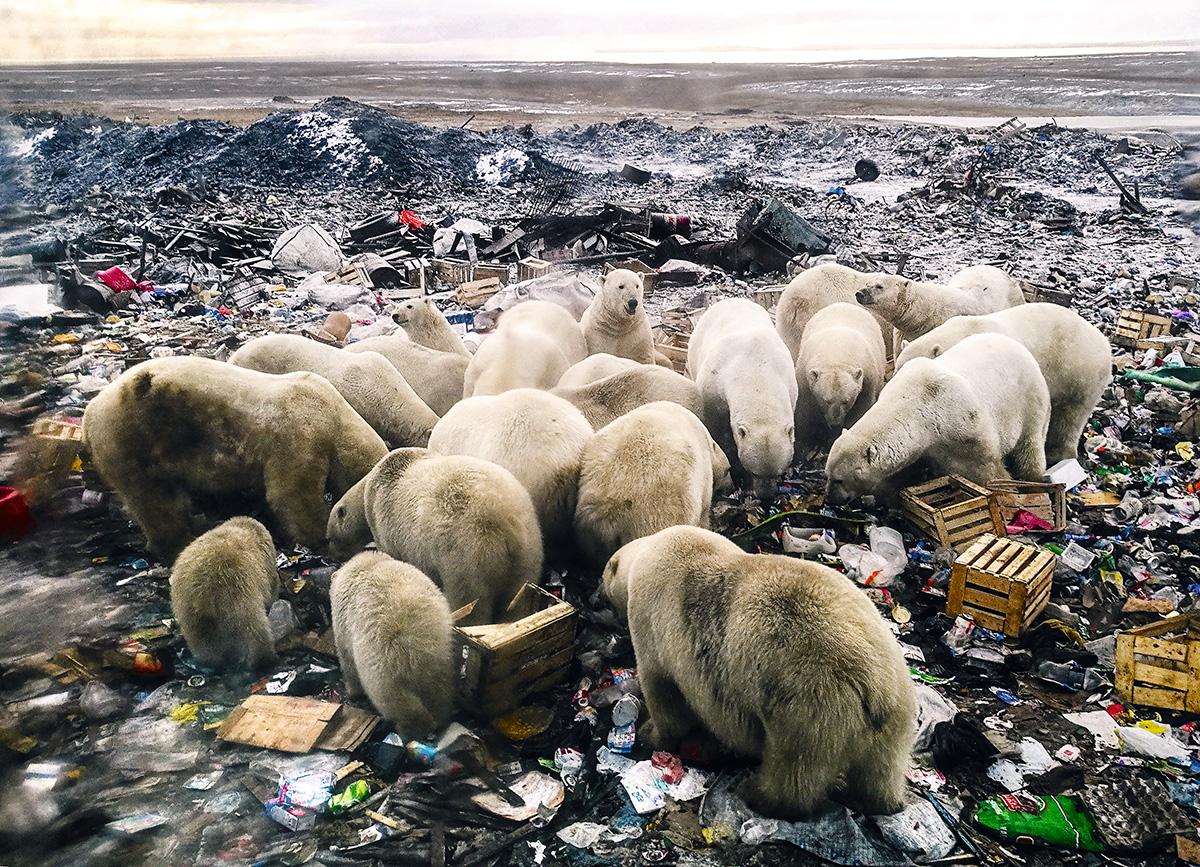 """Em razão das atuais ameaças à natureza, o jornal recomenda que o termo """"mudança do clima"""" seja substituído por """"colapso"""" ou """"crise"""" do clima"""