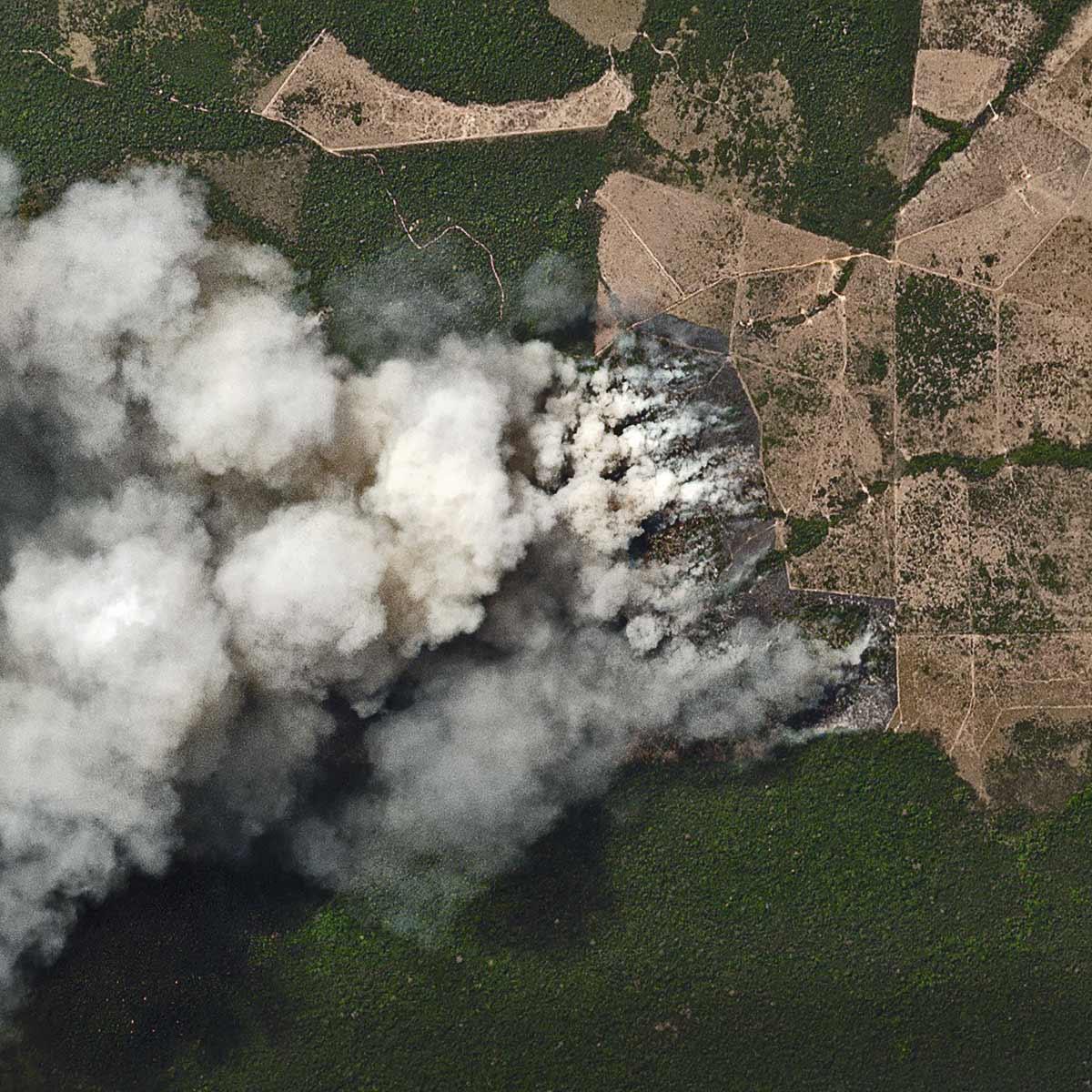 O governo quer comprar imagens de satélite da Amazônia em alta resolução para orientar os fiscais, embora o Ibama não dê conta de atender aos milhares de alertas de desmatamento que recebe todo ano de quatro sistemas de monitoramento.