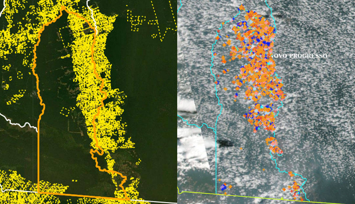 Mapas mostram superposição entre áreas particulares (imagem 1) e focos de incêndio (imagem 2) no município de Novo Progresso; situação se repete em toda a Amazônia