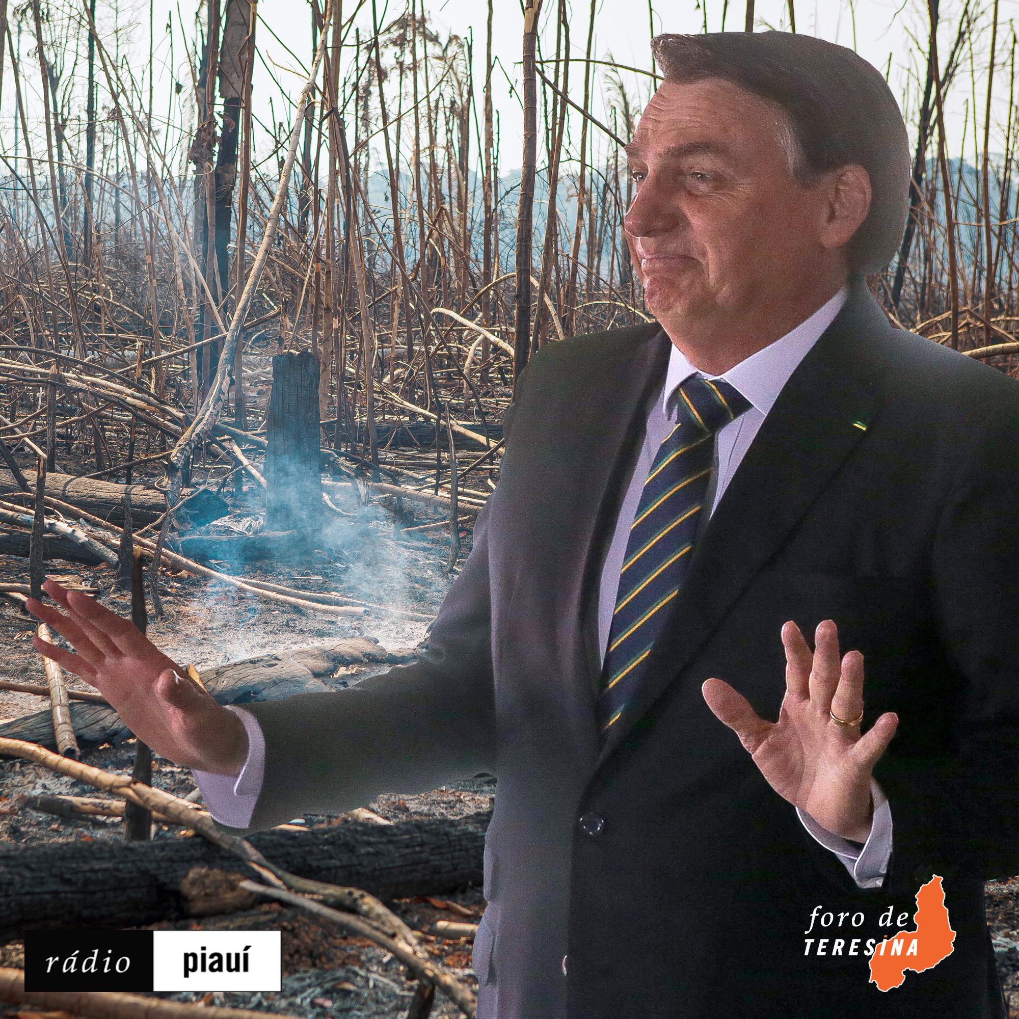 #78: Desmatamento em alta, a taxação dos desempregados e o vandalismo na Câmara