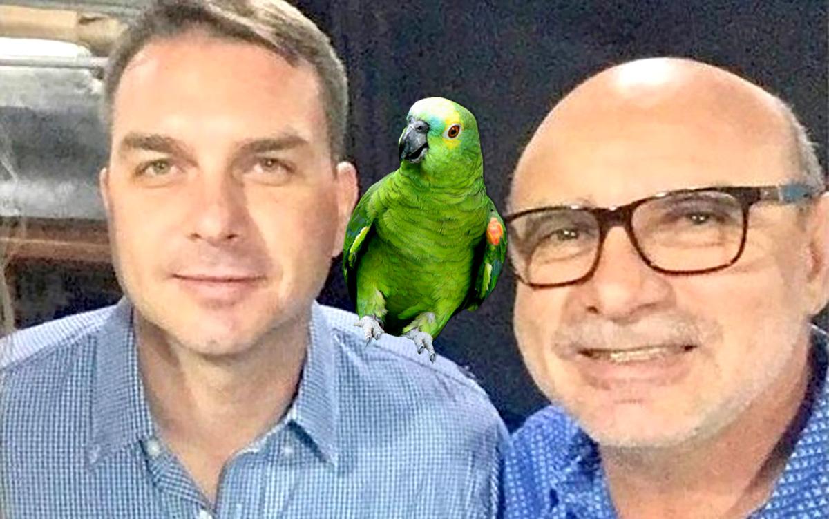 """Os papagaios também serão instruídos a postar áudios contra o PT em grupos de família do WhatsApp. """"Sai mais barato que bot"""", disse Carlos Bolsonaro"""