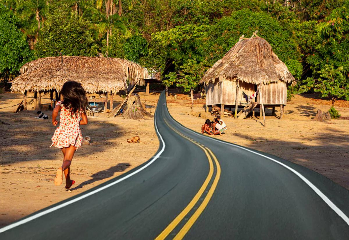Asfaltando a Amazônia