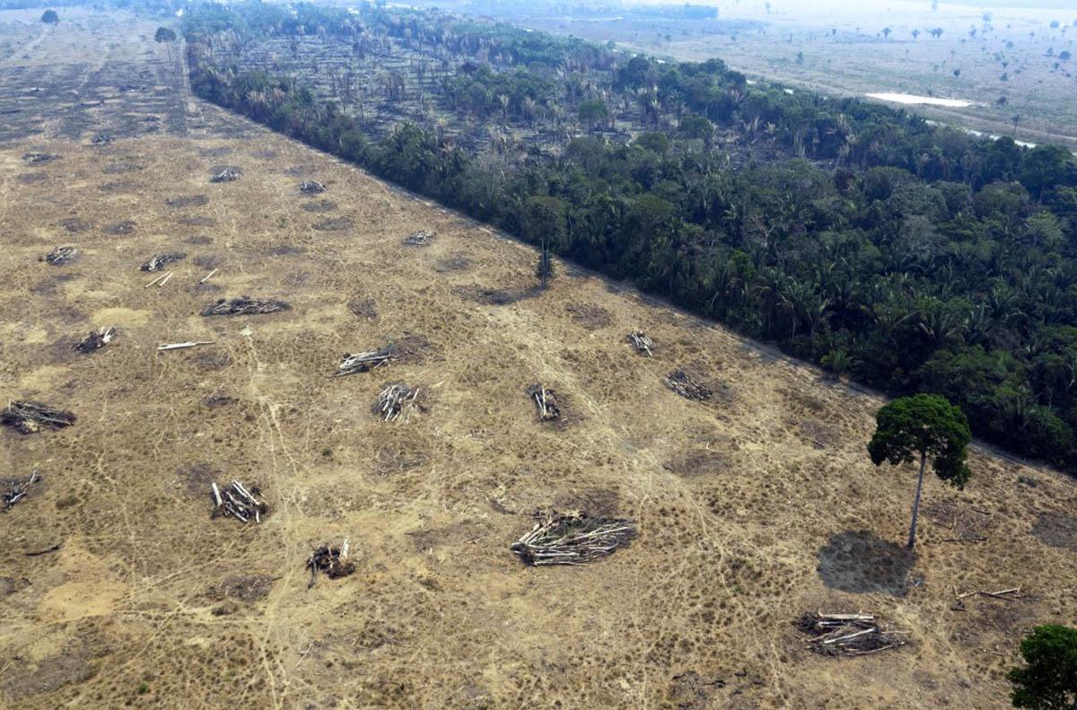 Lado a lado, áreas e floresta e regiões desmatadas para plantio –