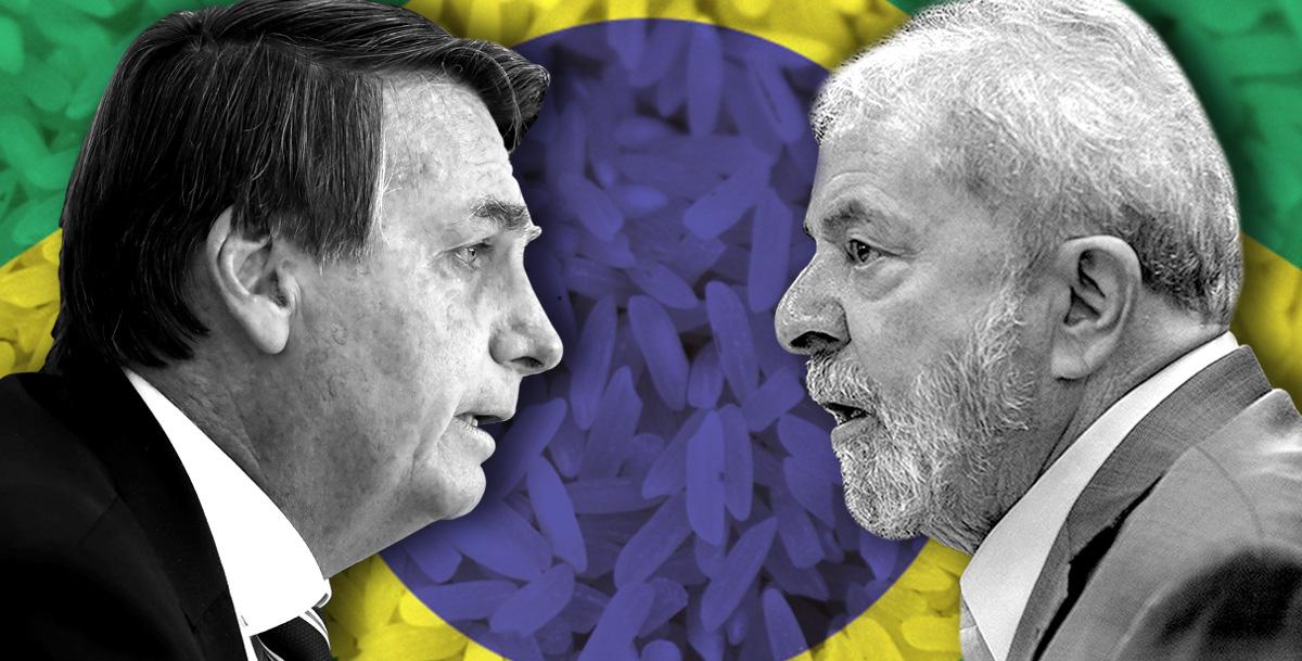 Intervenção de Paula Cardoso sobre fotos de Marcos Corrêa/PR/Agência Brasil e Marlene Bergamo/Folhapress