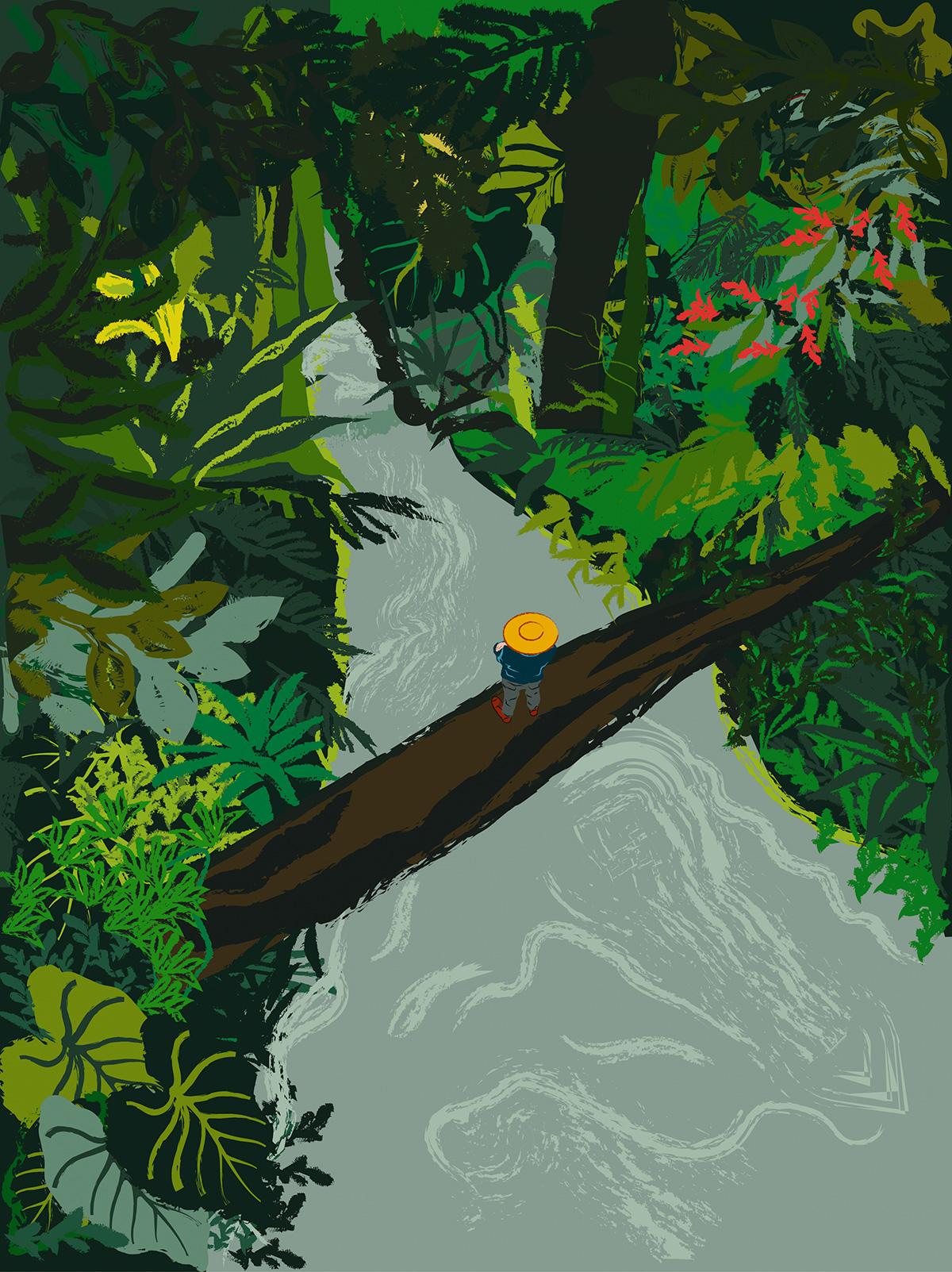Arrabalde: Parte I_A floresta difícil