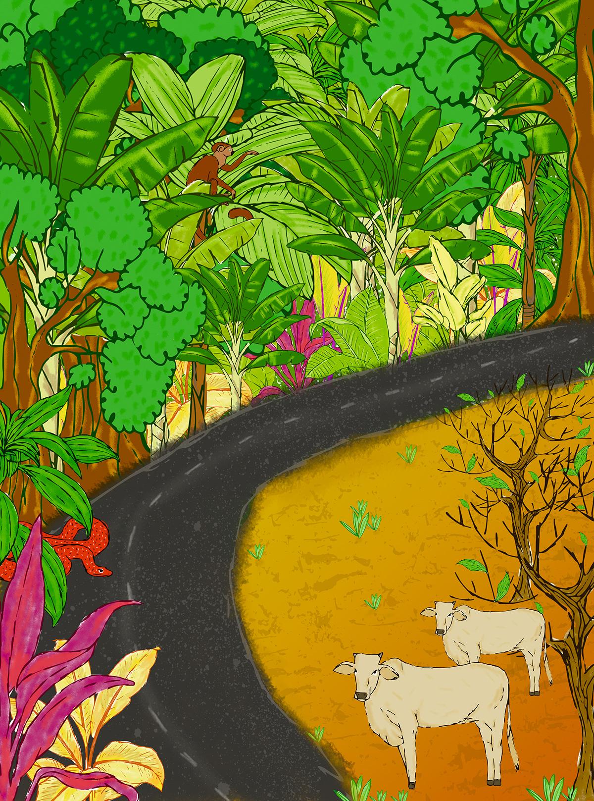 A ciência vem descobrindo uma nova espécie animal ou vegetal na Amazônia a cada dois dias. Botar a floresta abaixo antes mesmo de conhecê-la é como apagar um idioma exótico
