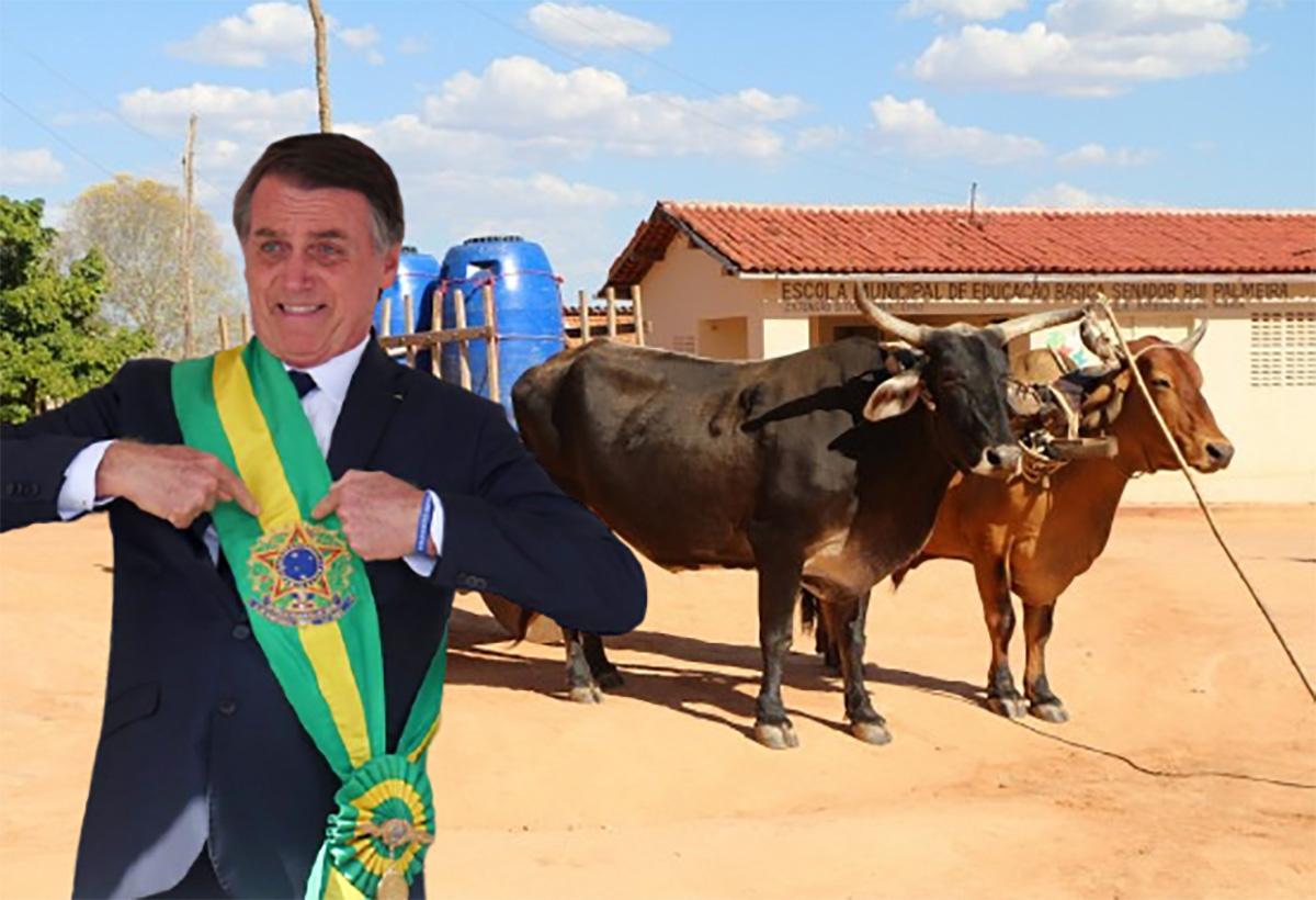 Segundo estimativas do governo, o governo conta inicialmente com 57 milhões de cabeças de gado para a propulsão dos novos veículos