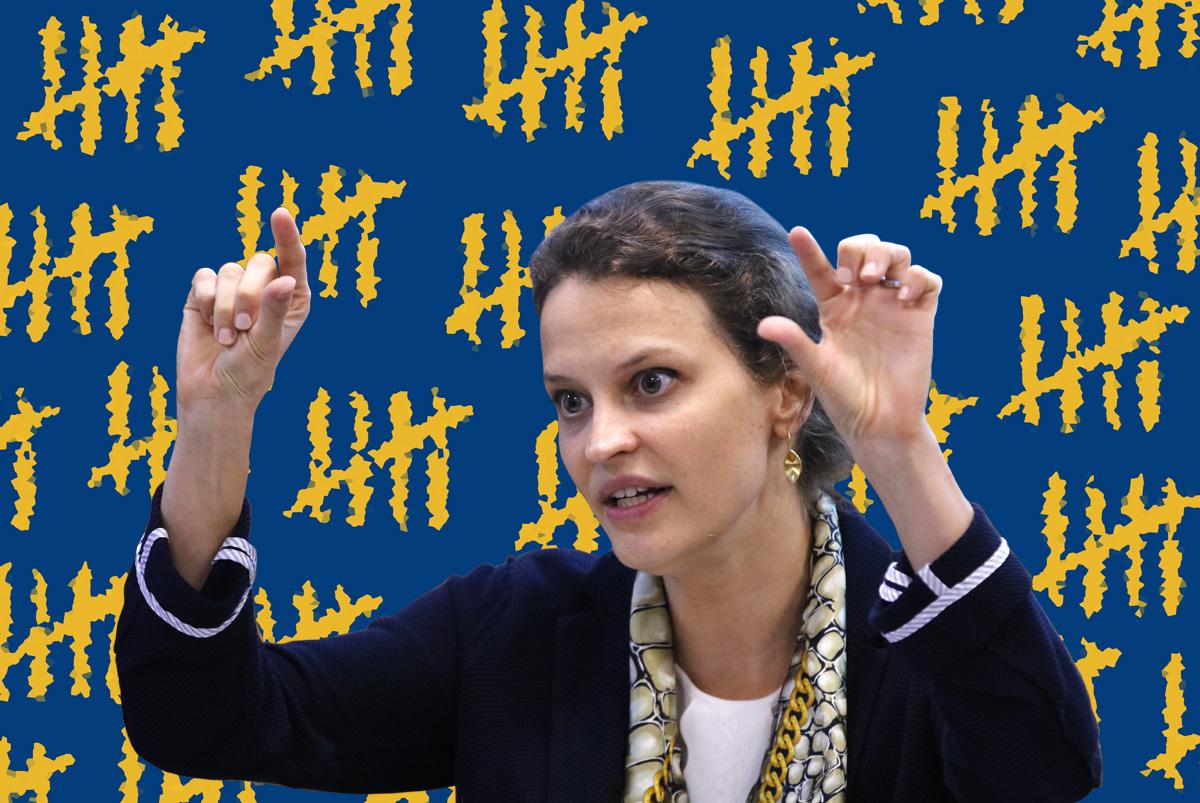 Susana Cordeiro Guerra, ex-presidente do IBGE: périplo em busca de recursos para o Censo não deu resultado –