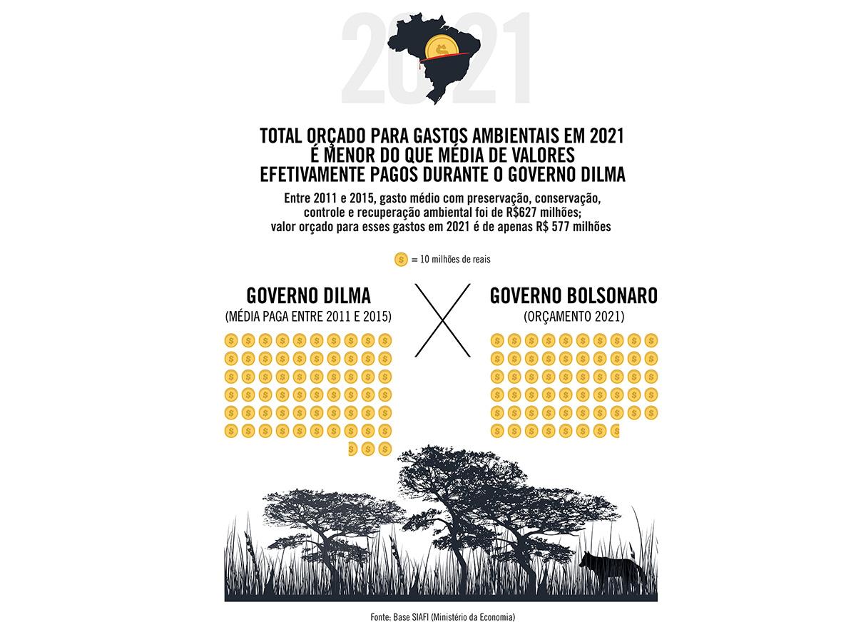 Total orçado para gastos ambientais em 2021 é menor do que média de valores pagos durante o governo Dilma